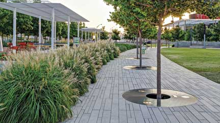Best Commercial Landscaping Experts In Baytown Baytown